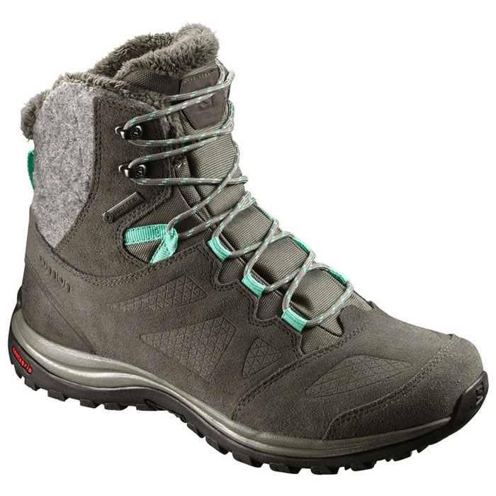obuv SALOMON Ellipse Winter GTX Castor Gray/Beluga/Biscay Green
