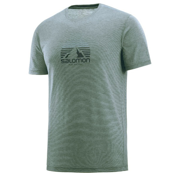 tričko SALOMON Explore Graphic SS Tee M Flint Stone